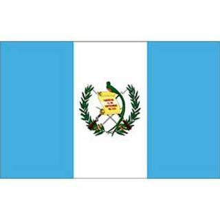 Guatemala Flag 3x5' Polyester.