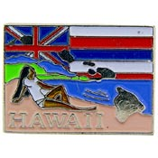 Hawaii State Decorative Lapel Pin.